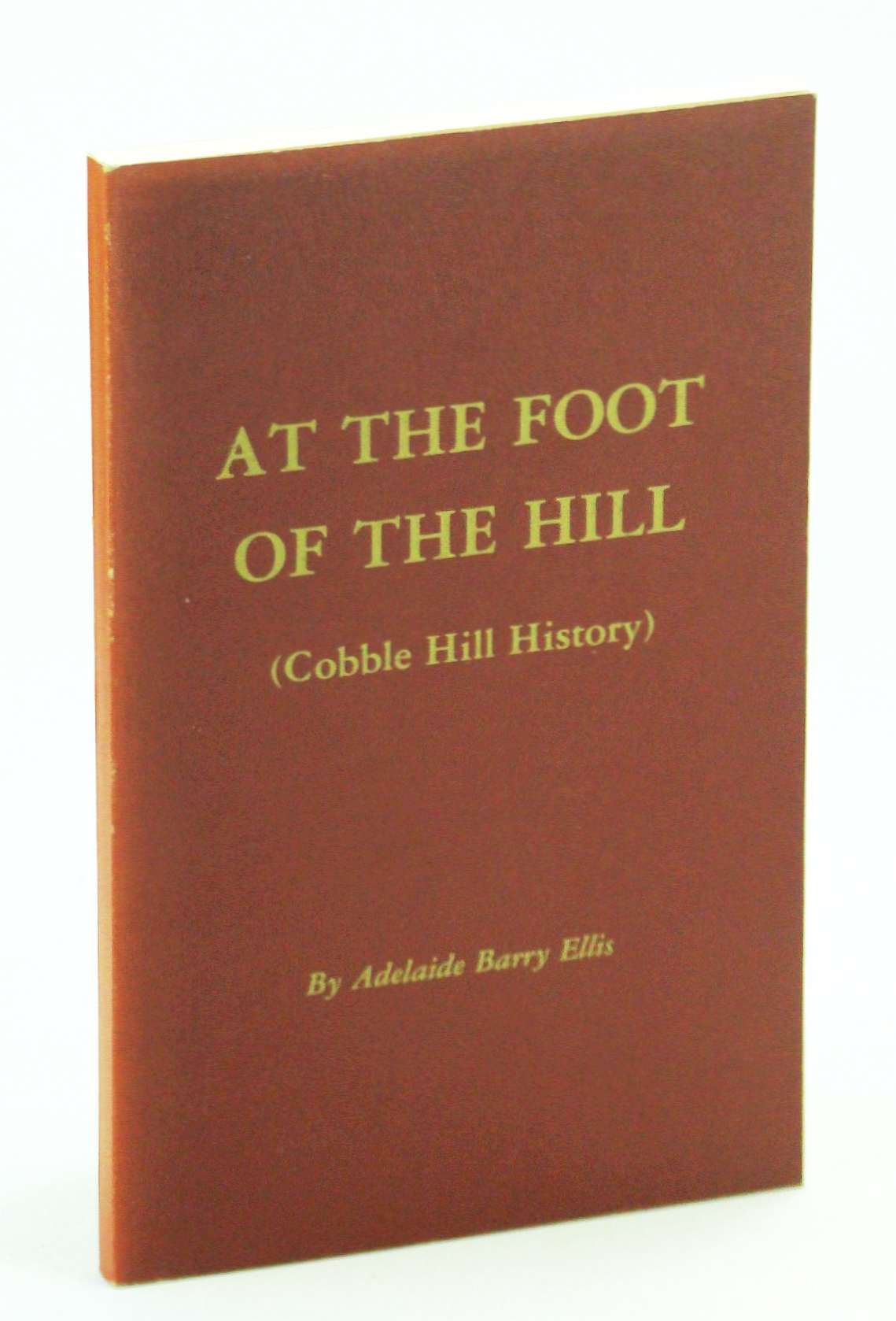 Image for At The Foot of the Hill (Cobble Hill History)