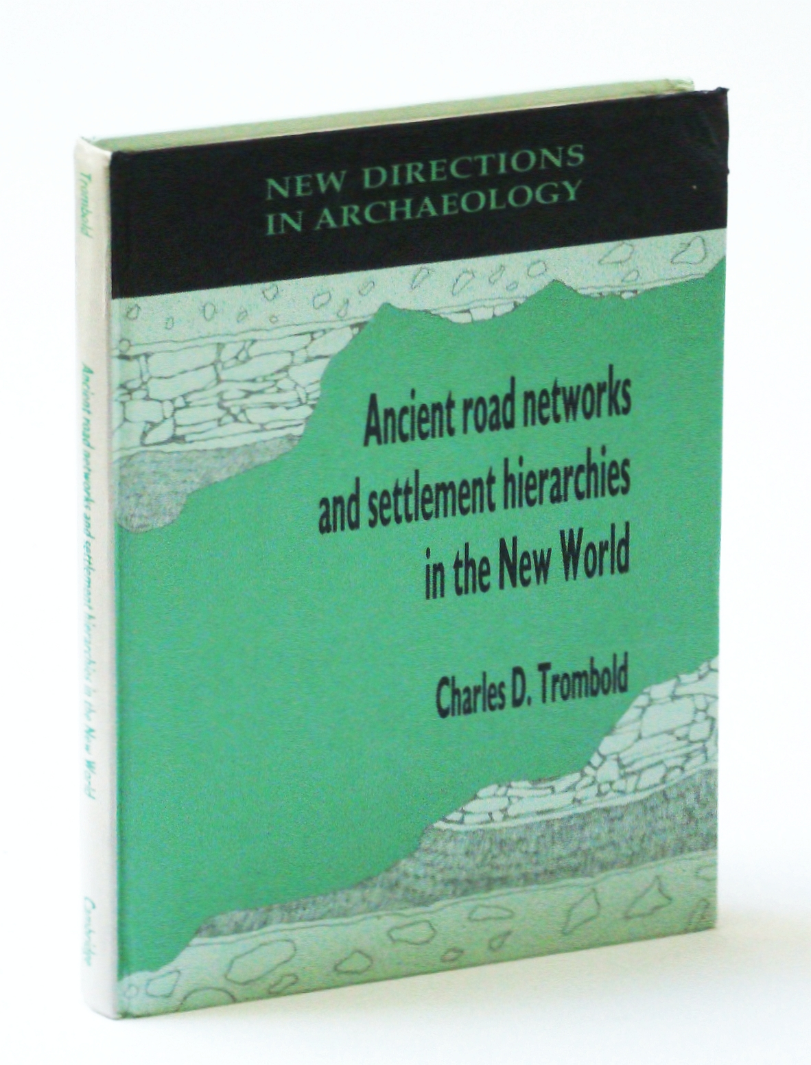 Image for Ancient Road Networks and Settlement Hierarchies in the New World (New Directions in Archaeology)