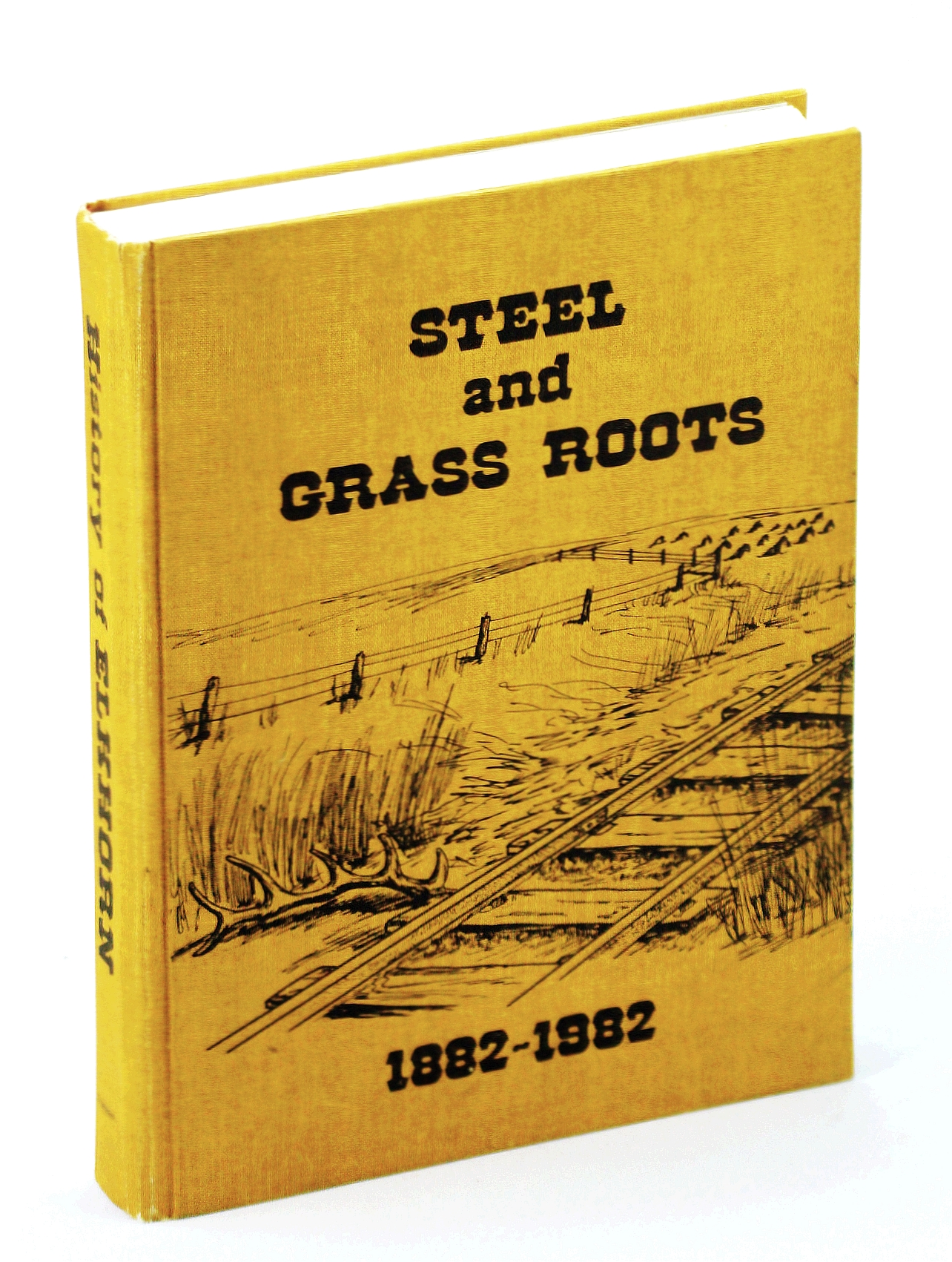 Image for steel and Grass Roots 1882-1982