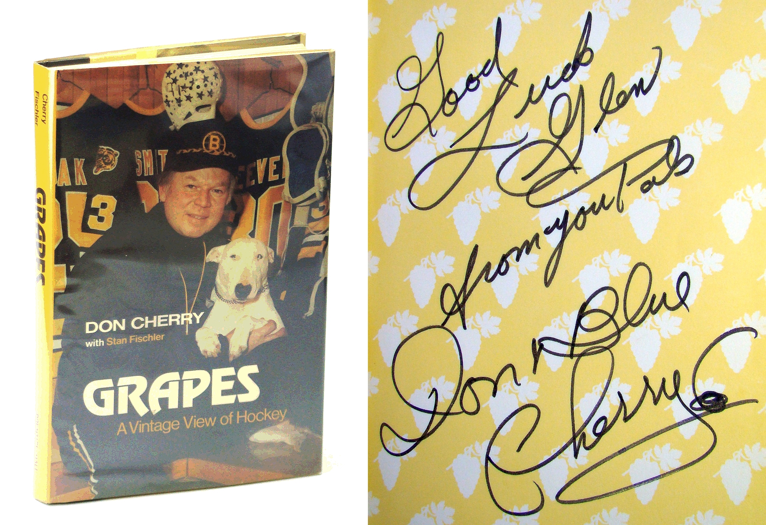 Image for Grapes: A vintage view of hockey