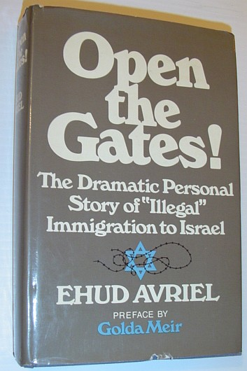 "Image for Open the gates!: A personal story of ""illegal"" immigration to Israel"