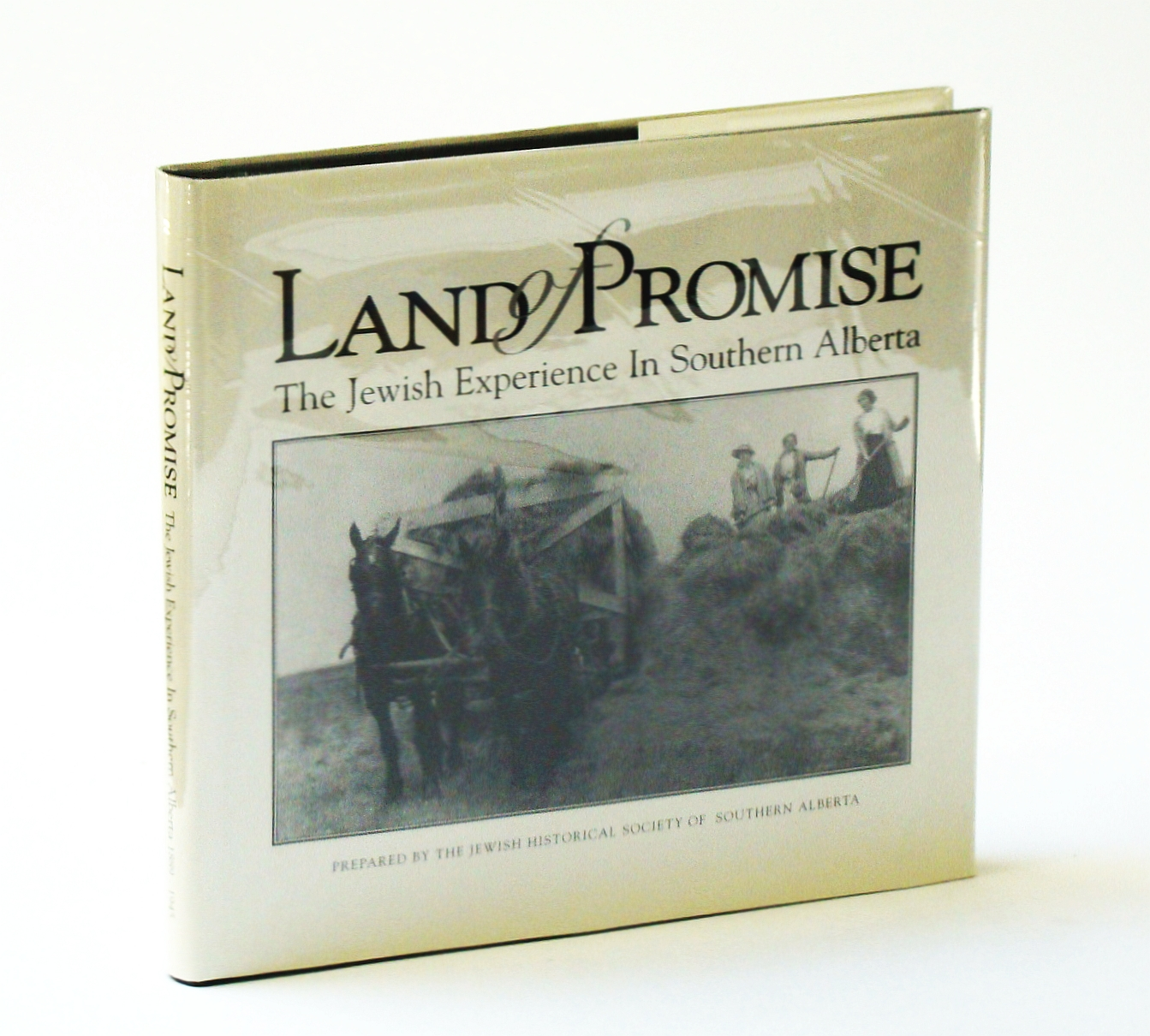Image for Land of promise: The Jewish experience in Southern Alberta
