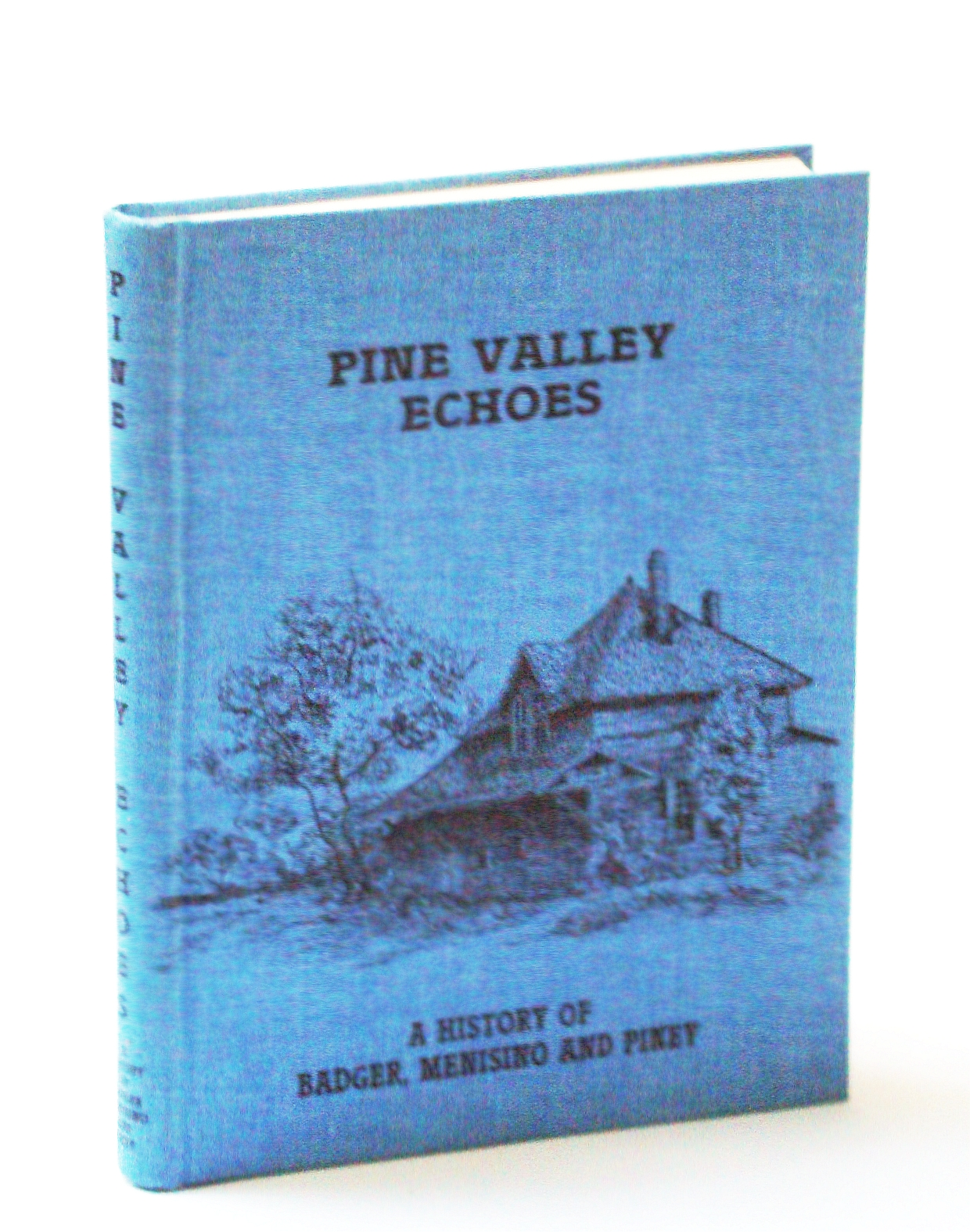 Image for Pine Valley Echoes - A History of Badger, Menisino and Piney, Manitoba