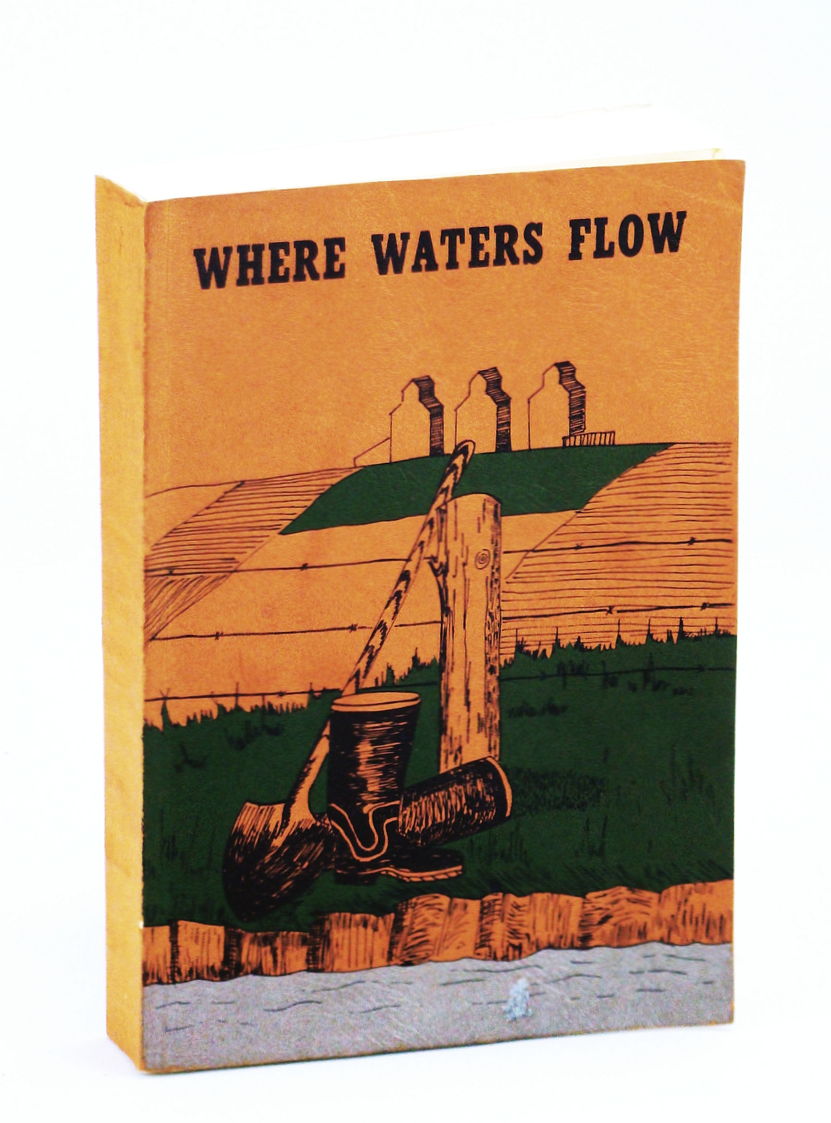 Image for Where Waters Flow: Local History of Vauxhall and Districts, Alberta