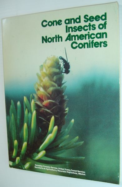 Image for Cone and Seed Insects of North American Conifers