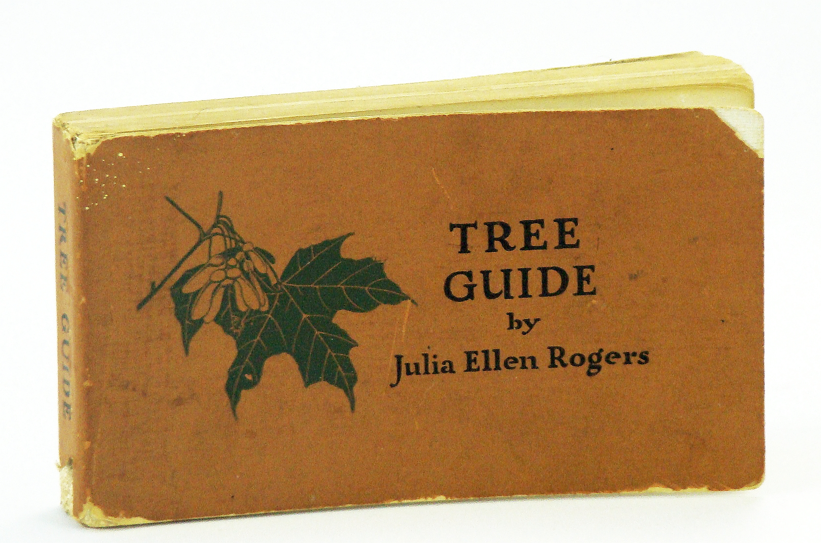 Image for Tree Guide - Trees East of the Rockies