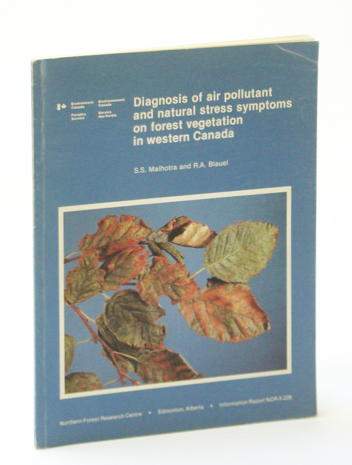 Image for Diagnosis of air pollutant and natural stress symptoms on forest vegetation in western Canada (Information report / Northern Forest Research Centre)
