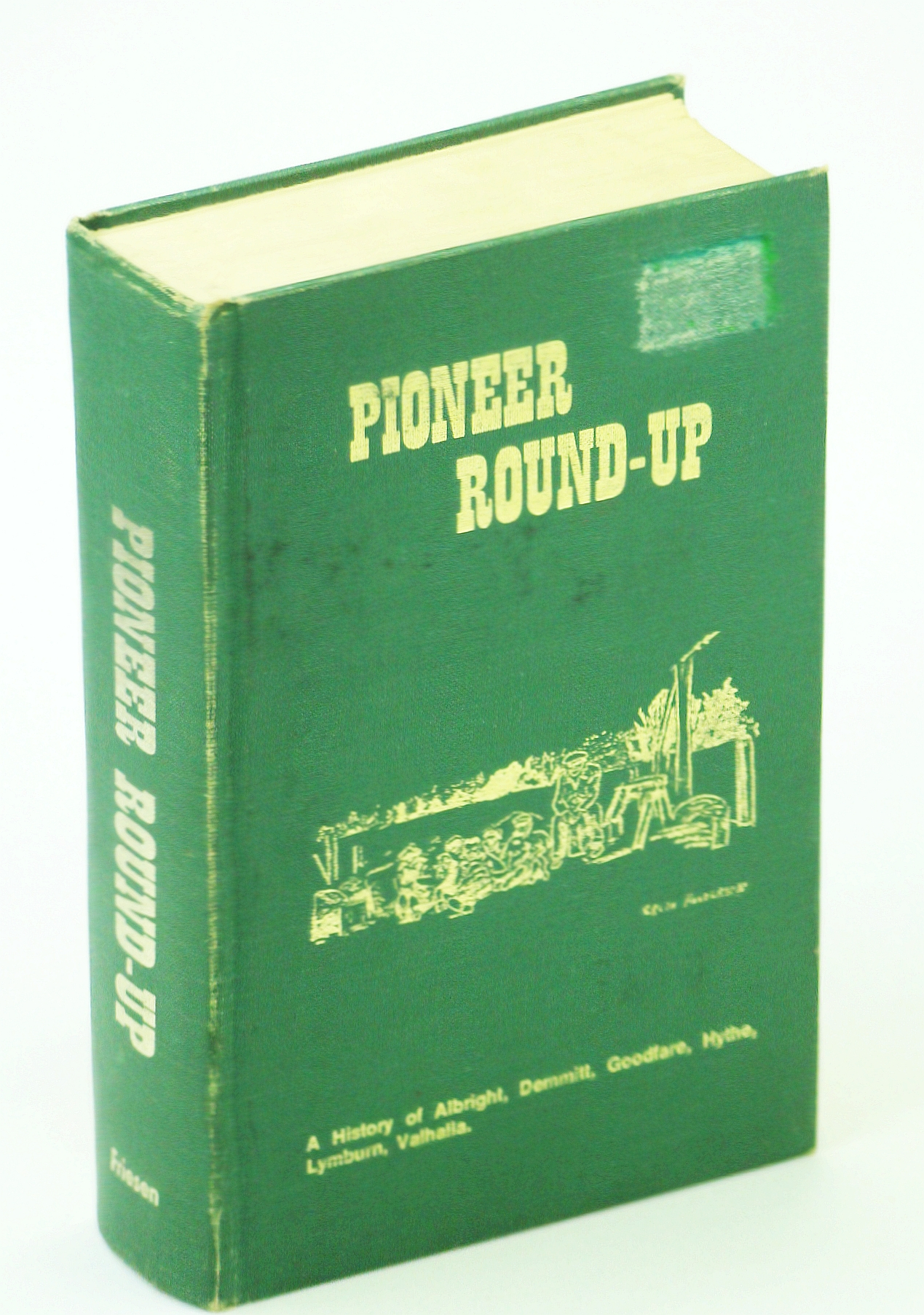 Image for Pioneer round-up: A history of Albright, Demmitt, Goodfare, Hythe, Lymburn, Valhalla