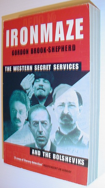 Image for Iron Maze: The Western Secret Services and the Bolsheviks