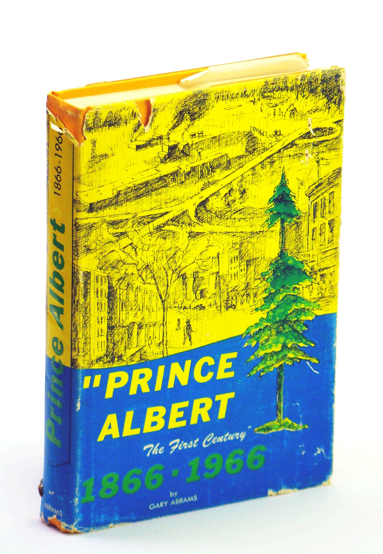 Image for Prince Albert: The First Century 1866-1966