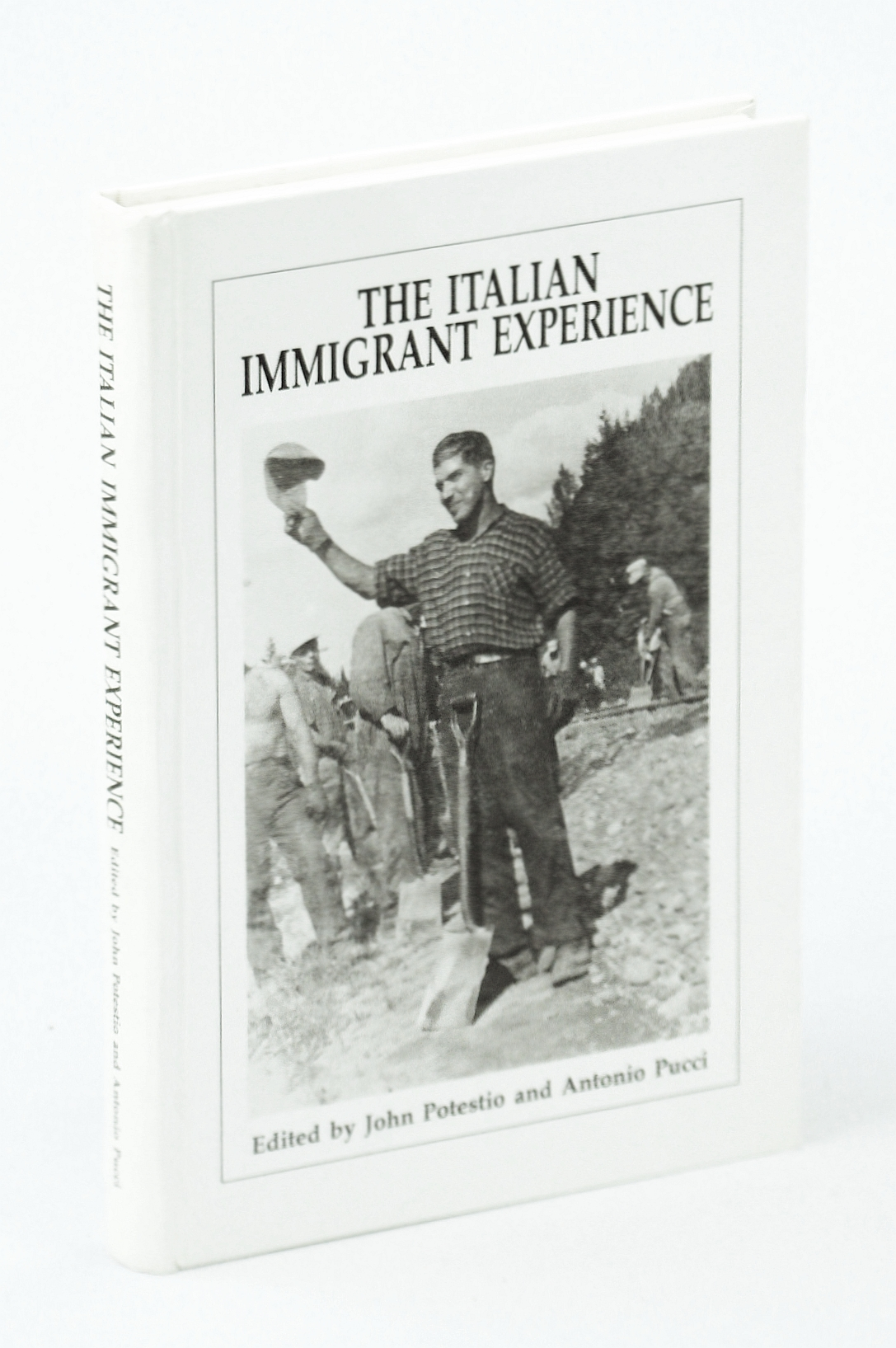 Image for The Italian immigrant experience