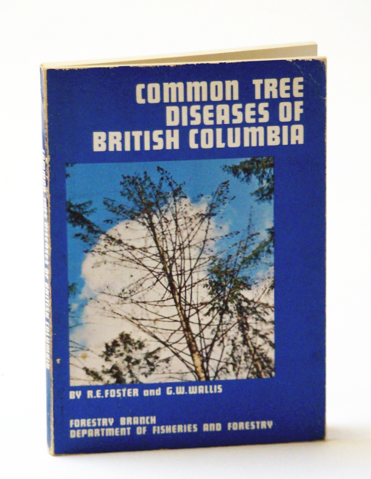 Image for Common Tree Diseases of British Columbia (B.C.)