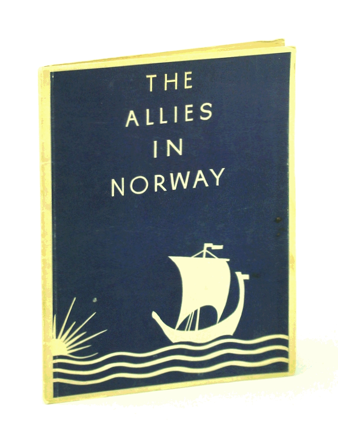 Image for The Allies in Norway