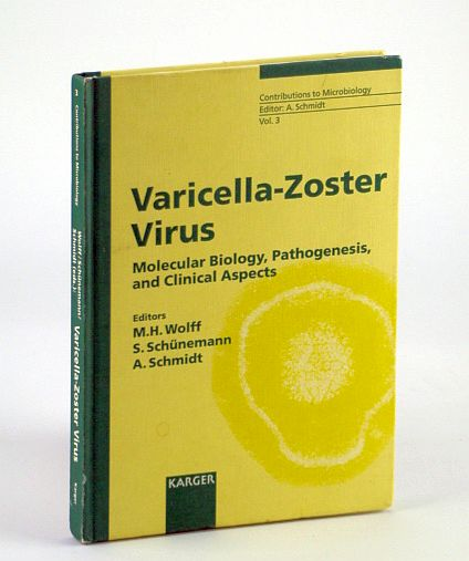 Image for Varicella-Zoster Virus: Molecular Biology, Pathogenesis and Clinical Aspects (Contributions to Microbiology, Vol. 3)
