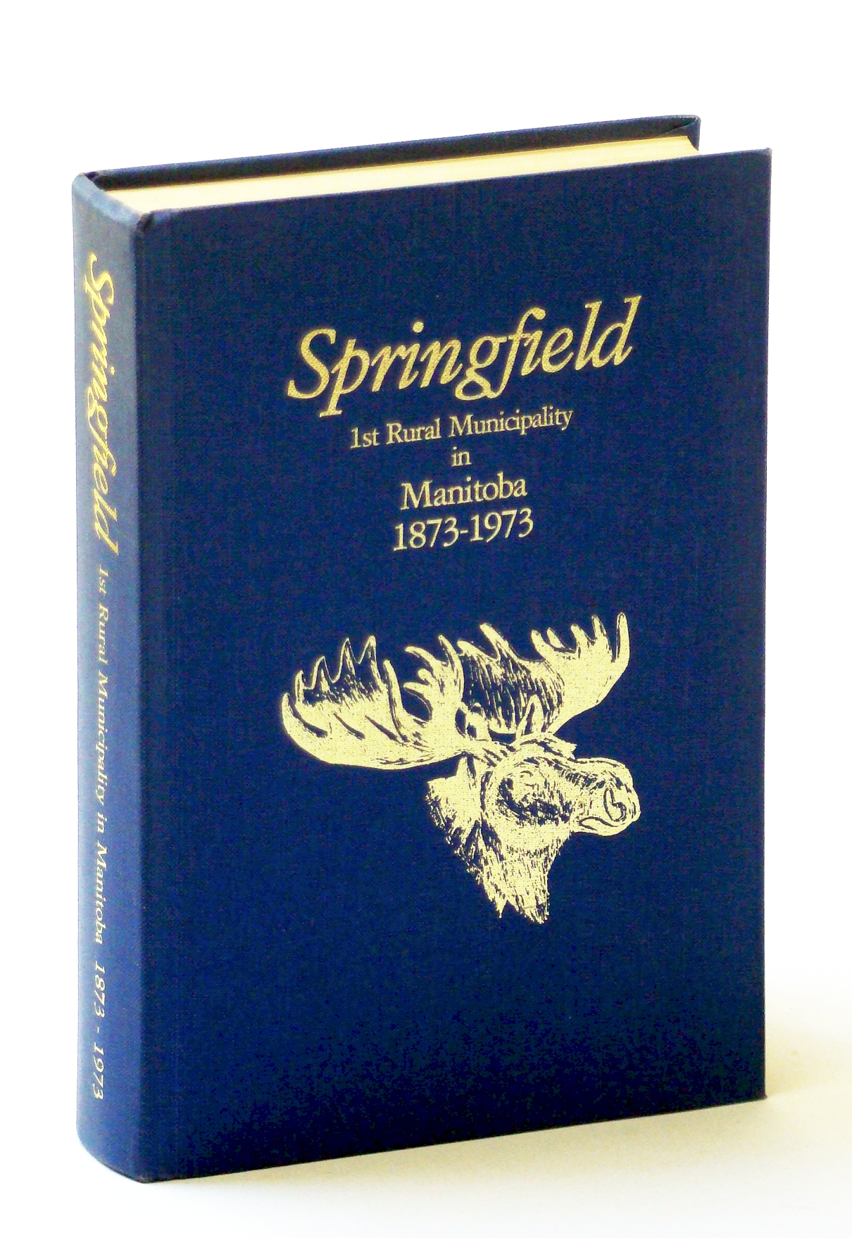 Image for Springfield: 1st rural municipality in Manitoba, 1873-1973
